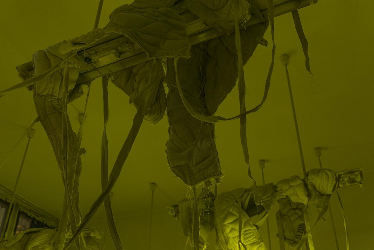 http://ulalucinska.com/files/gimgs/th-59_insidejob_survival_itwillshift014.jpg
